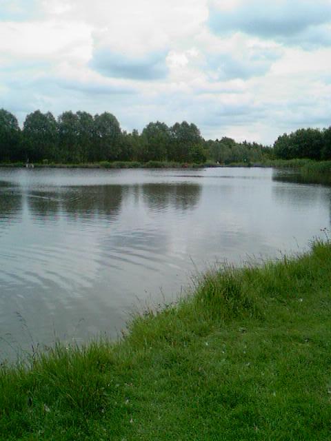 Brierly pond.jpg