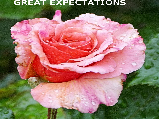 GREAT EXPECTATIONS.jpg