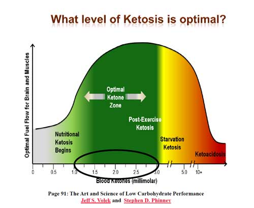 Ketogenic diet - very bad side effects | Diabetes Forum • The Global Diabetes Community