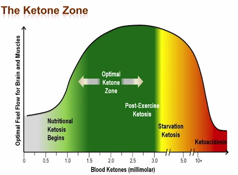 optimal-ketosis-range-2.jpg