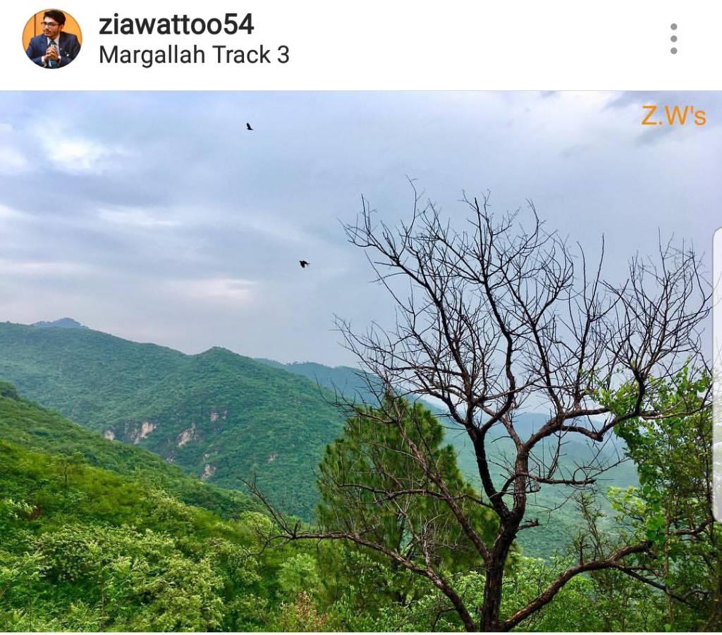 Screenshot_20180530-121241_Instagram.jpg