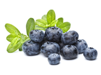 Bilberries may help to treat retinopathy