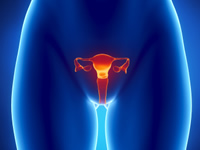 Uterine  cancer is more common  in older women over the age of 50
