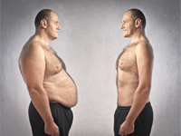 visceral fat (active fat) - types of fat, insulin resistance, Human Body