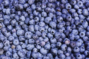 Blueberry carbohydrate